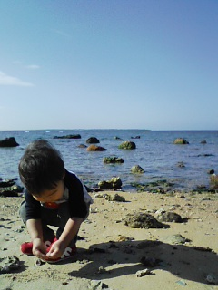 竹富島をのぞみながら